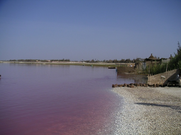 lac_rose_in_senegal
