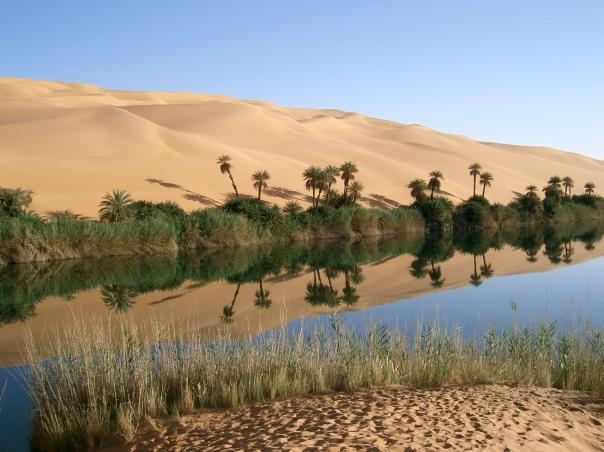 Oasis_in_Libya