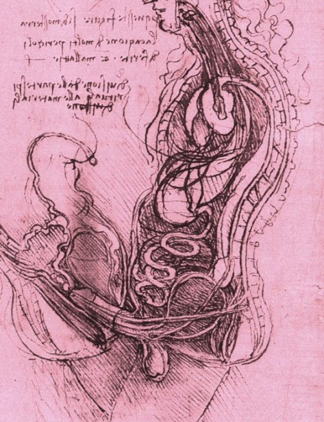 Coition_of_a_Hemisected_Man_and_Woman