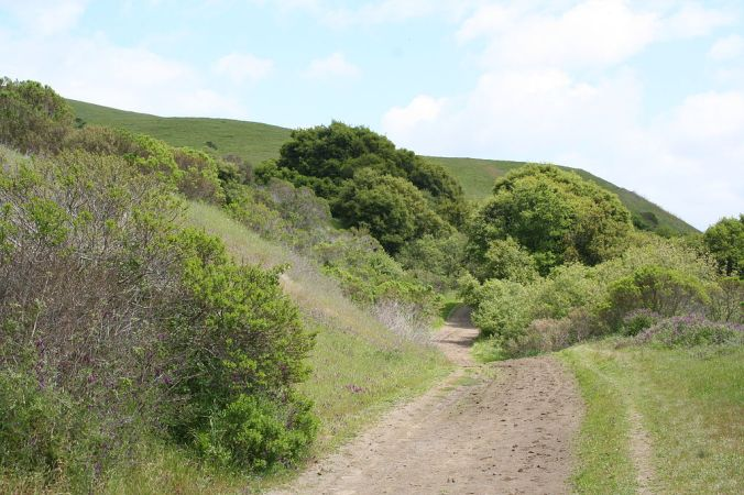 1024px-Wildcat_Canyon_California.JPG