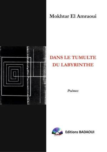 Couverture de mon recueil Dans le tumulte du labyrinthe - Copie