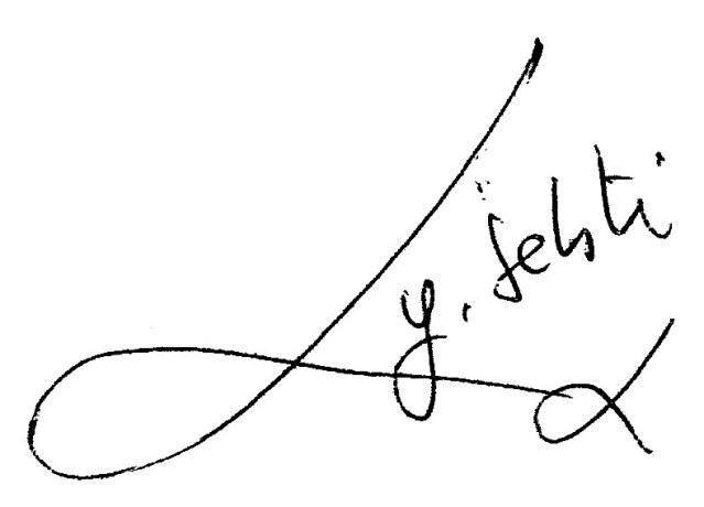 Signature_Youcef_Sebti
