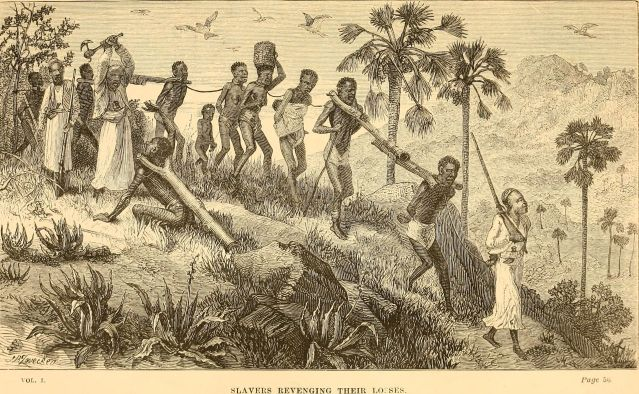 The_Last_Journals_of_David_Livingstone,_in_central_Africa_(1874)_(14783837922).jpg