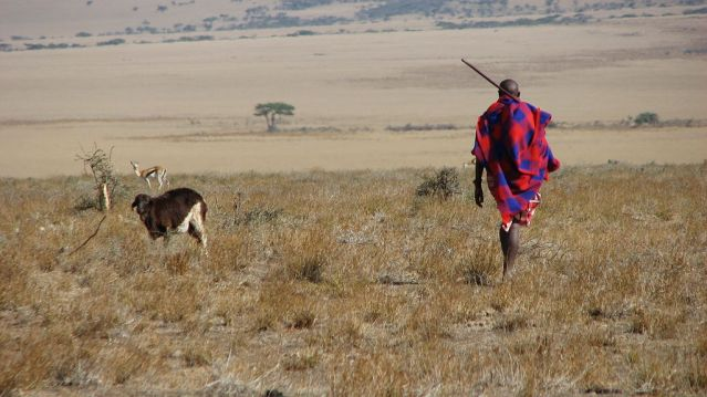 Maasai_man,_Eastern_Serengeti,_October_2006.jpg